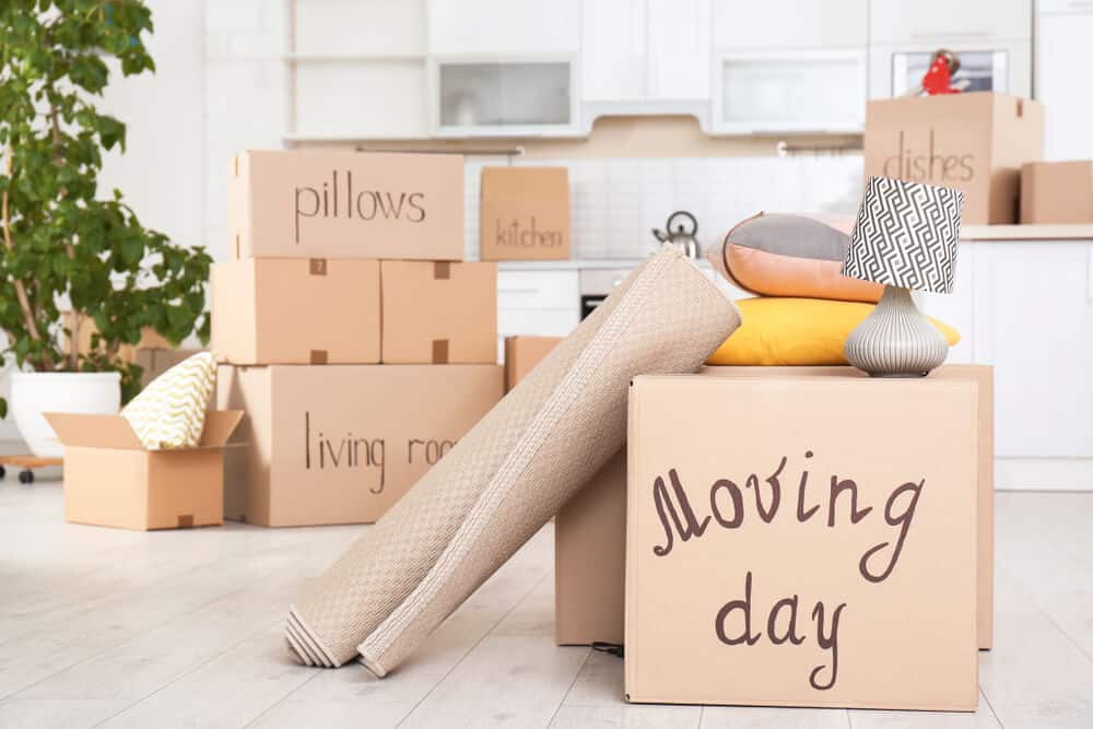 The Importance Of Removal Services Near Me