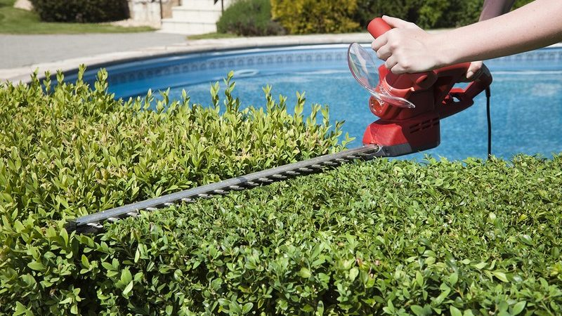 All You Need To Learn About The Grounds Maintenance Services